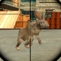 Rabbit Shooter